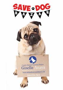 Save Dog Bazar